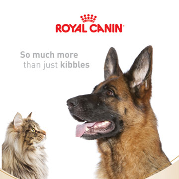 Royal Canin Cover