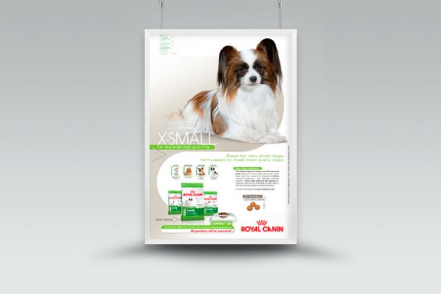 Royal Canin X-Small Poster